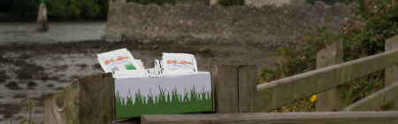 The story behind the Wheatgrass business
